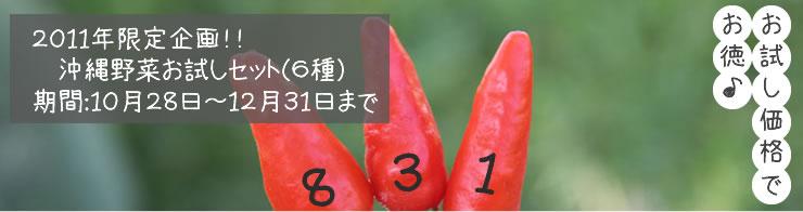 沖縄野菜お試しセット