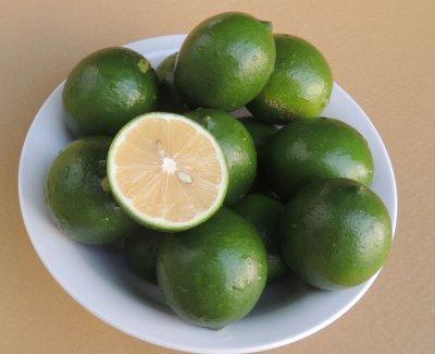 画像1: 沖縄県産 優しい味の イエローレモン(マイヤーレモン)1.5kg(12~20個)