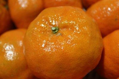 画像1: 沖縄県産 サンタ紅 (大紅)2kg クリスマス時期に出荷される赤い美味しいみかん【発送期間12月中】