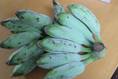 画像1: 早い者勝ち!!≪アイスクリームバナナ≫沖縄産野菜用バナナ4kg 【配達日指定不可】
