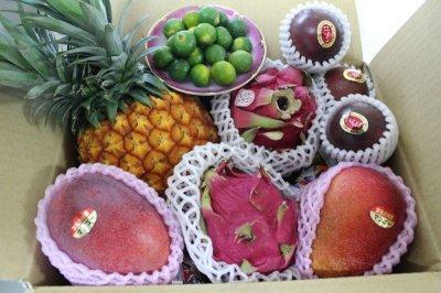 画像1: 【送料無料】野菜一品付き お任せトロピカルフルーツフルーツお楽しみ福袋(5種類セット)【5,000円×12ヶ月】