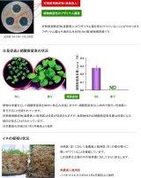 楽農美人 好熱性微生物を用いた環境保全型の発酵液肥 20リットル