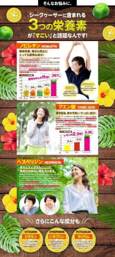 画像2: 【送料無料】 沖縄産 青切りシークワサー 100% 500ml×6本 ※別商品との同梱不可商品