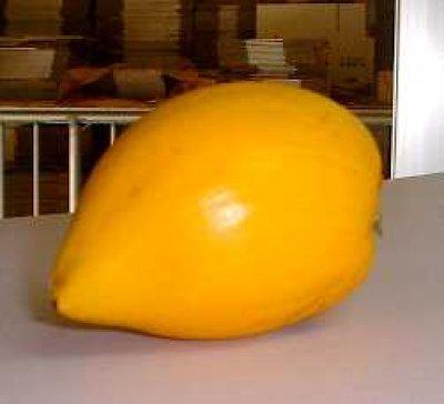画像2: 【お試用】沖縄県産 カニステル 約400〜500g 南国の不思議な果物(エッグフルーツ)【発送1月〜4月】【配達日指定不可】