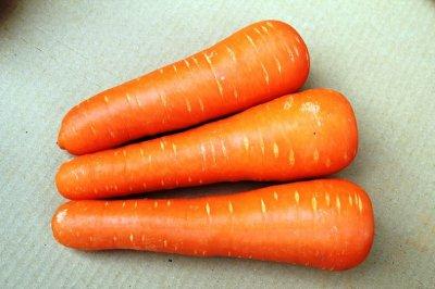 画像2: 【訳あり品】沖縄の旬の野菜人参10kg(大小混)糸満の喜屋武産でとっても甘い人参です。今だけメルマガ会員は20%引き!VIP会員様は25%引き!