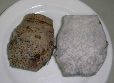 画像1: おせち料理に、沖縄料理に、田楽に、安心・フレッシュ沖縄県産野菜 タイモ(ターム)1kg
