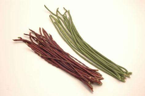 画像1: 長い豆、フーロー豆、三尺豆、★呼び名は色々★約500gエスニック料理に! (1)