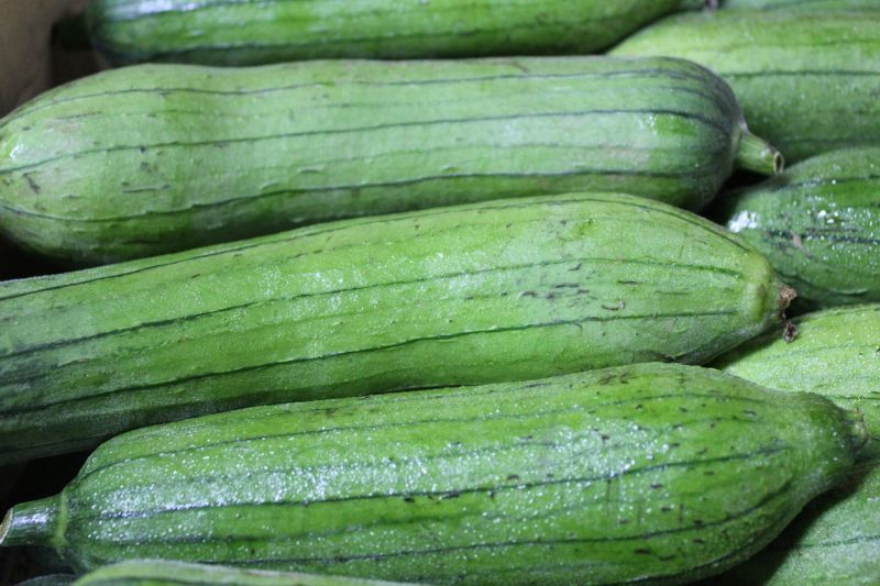 画像1: 沖縄産 サラダ用へちま(ナーベーラー)1kg 沖縄野菜 生食用ヘチマ もちろん炒めても美味い (1)