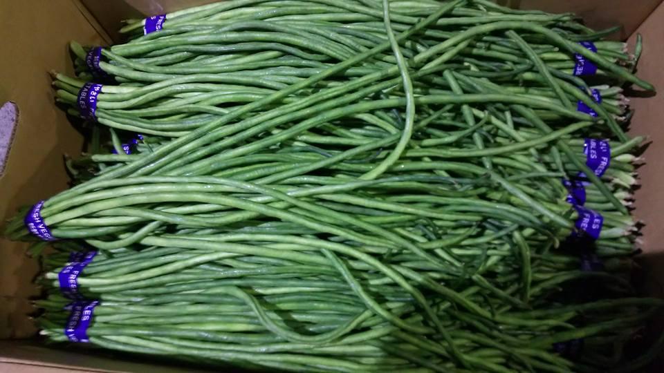 画像1: 長い豆、フーロー豆、三尺豆、★呼び名は色々★約1kgエスニック料理に! (1)