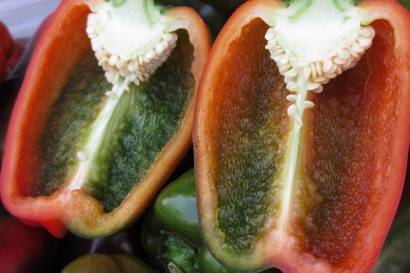 画像1: 自社農場栽培☆低農薬 ☆マルチカラーピーマン1kg ☆完全に色がついてない訳あり品 (1)
