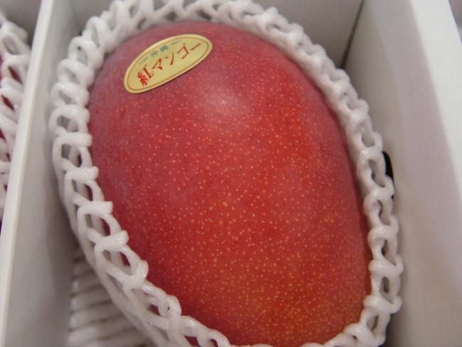 画像1: 【送料無料】紅マンゴー2kg4〜5玉の大玉入り超お勧め(配達日指定不可) (1)