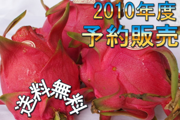 画像1: 【送料無料/優品】沖縄県産 ドラゴンフルーツ 5kg(10〜18玉)(カラーお任せ)【発送時期7月下旬〜12月上旬】【配達日指定不可】ピタヤ トロピカルフルーツ (1)