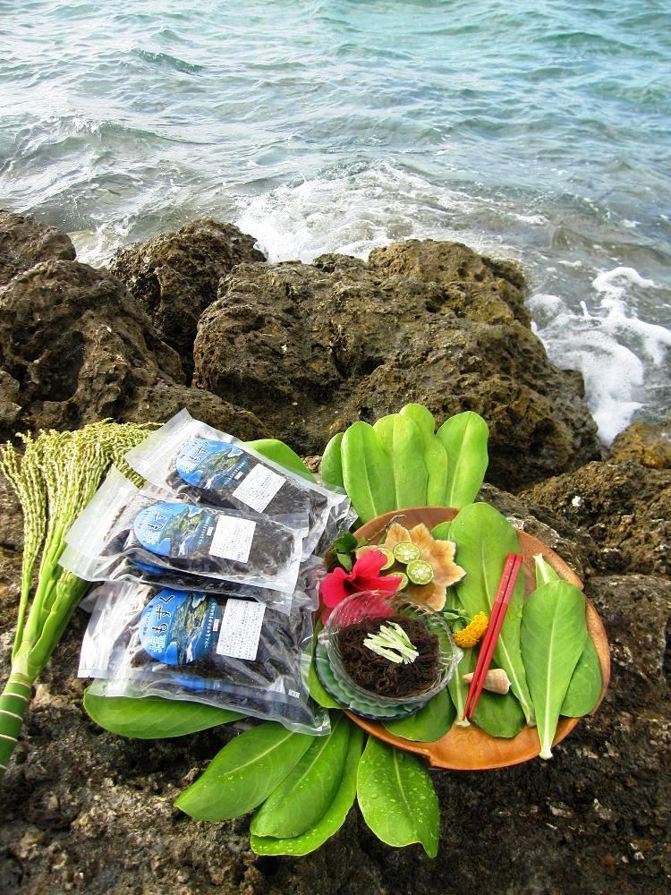 画像1: 沖縄県津堅島産 天然太モズク1.5kg(300g×5パック)【贈答品にも最適】 (1)