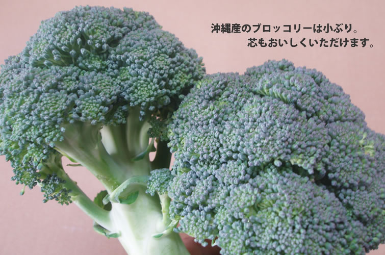 沖縄産ブロッコリー