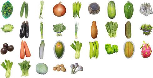 沖縄野菜一覧